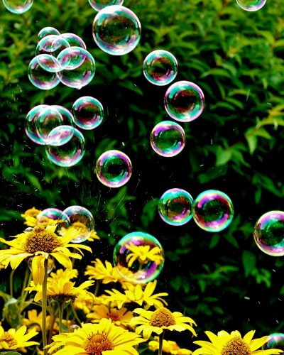 soap-bubbles-3540303_1920